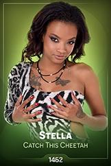 iStripper - Stella - Catch This Cheetah
